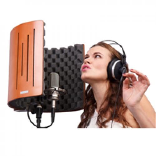 Мікрофонні екрани