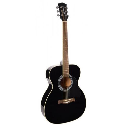 Акустична гітара Richwood RA-12-BK
