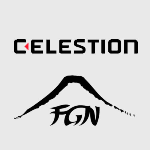 Новинки для всіх любителей електро та бас-гітар від Fujigen і Celestion