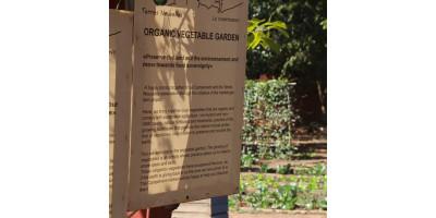 Kangaba змінює світ - через тисячі дрібниць