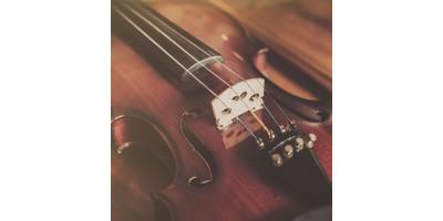 Скрипки Leonardo для майбутніх Вівальді