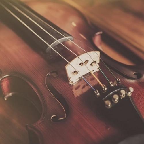 Leonardo violins for future Vivaldi