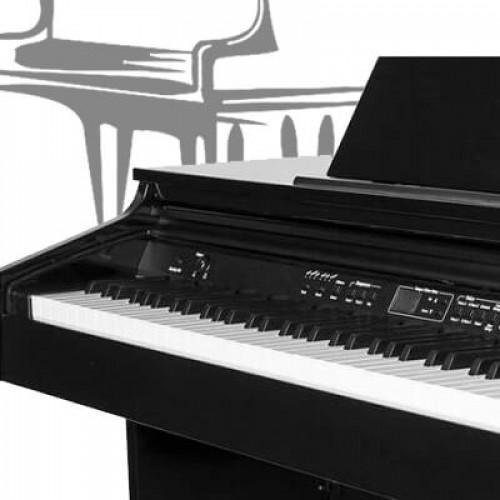 Рояль или фортепиано: какой инструмент выбрать?
