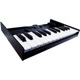 Портативная клавиатура Roland K-25m
