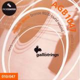 Струни для акустичної гітари Galli PROcoated AGB1047-12 (12-47) 12-Strings Light
