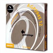 Струни для акустичної гітари Galli PROcoated AGP0945-12 (09-45) Extra Light