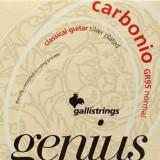 Classical guitar strings Galli Genius Carbonio PROcoated GR95 (24-44) Normal Tension