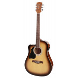 Electric Acoustic guitar Richwood RD-12LCESB