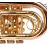 Труба Odyssey OCR100P